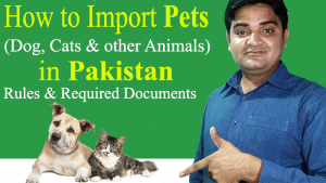 How to Import Pets in Pakistan